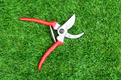 Red garden secateurs Royalty Free Stock Images