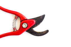 Red garden secateurs. On white background Royalty Free Stock Image