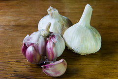 Red Garlic Stock Image