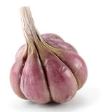 Red garlic Royalty Free Stock Images