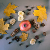 Red garnet fruit top view on table. Autumn still life Stock Photography