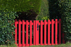 Red gate. Bright red wooden gate leading through a mysterious thick green garden Royalty Free Stock Photo