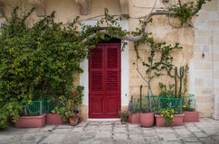 Red gate of a house at island Malta. Door with a red shutter, among many plants. Street of city Senglea, mediterranean island Malta Royalty Free Stock Photography
