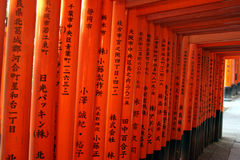 Red gate (torii) in Kyoto Royalty Free Stock Photo