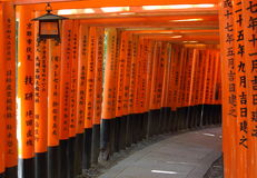 Red gates tunnel in Kyoto Stock Photos