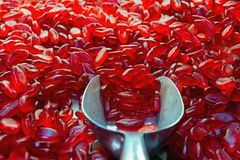 Red gelatinous candies Royalty Free Stock Image