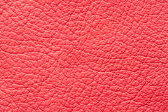 Red genuine leather texture Royalty Free Stock Photo