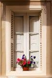 Red geraniums on the window, Malta Stock Photo