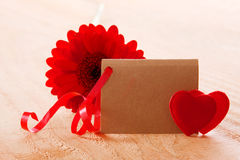 Red Gerber and love hearts. Stock Image