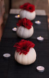 Red gerbera daisies in carved white Casper pumpkins Stock Photography
