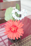 Red gerbera flower decorated on table Stock Photography