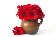 Red gerbera flowers in a vase Royalty Free Stock Photos