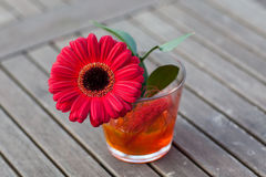 Red gerbera in a vase Royalty Free Stock Images