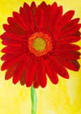 Red gerbera on yellow, watercolor Stock Photo