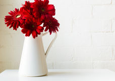 Red gerberas in white jug Royalty Free Stock Photography