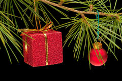 Red gift box and bauble on pine branch Royalty Free Stock Photo
