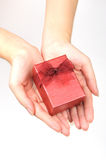 Red gift box in hand. Isolated in white background Stock Photos