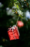 Red gift box hanging on christmas tree Royalty Free Stock Photography