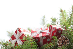 Red gift box on pine branch Royalty Free Stock Photography