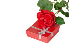 Red gift box and red rose on a white background Stock Image