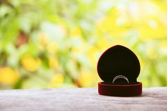 Red gift box with ring on background of greenery and flowers. Selective focus, toned image, film effect, macro, close-up. Red gift box with ring on background of Stock Photos