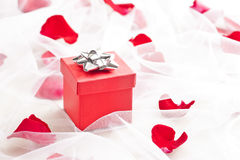 Red Gift box with silver bow on wedding veil. With rose petals Stock Photo