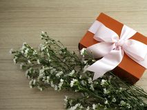 Red gift box tied with pink ribbon royalty free stock photo