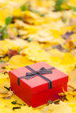 Red gift box in yellow leaves Stock Photo