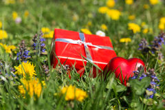 Red gift and heart in front of a spring meadow Royalty Free Stock Photos