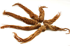 Red Ginseng Stock Photos