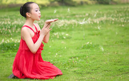 The red girl blowing dandelion Stock Images