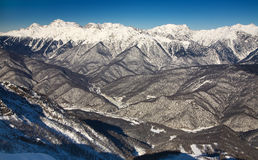 Red glade, Sochi Royalty Free Stock Photography
