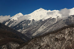Red glade, Sochi Royalty Free Stock Images