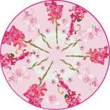 Red gladiolus circle decoration Stock Image