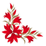 Red gladiolus flowers. Royalty Free Stock Image