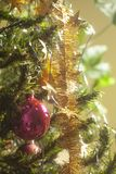 Red glass ball hanging on green Christmas tree branch. Close up royalty free stock images