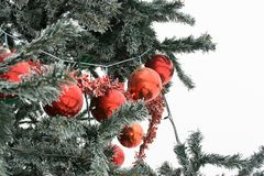 Red glass balls on tree. Red glass balls and tinsel on the Christmas tree branch Royalty Free Stock Photos