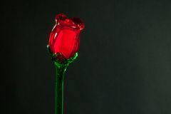 Red glass rose Royalty Free Stock Image
