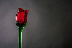 Red glass rose Royalty Free Stock Photography