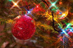 Red glitter Christmas bauble hanging on a spruce branch Royalty Free Stock Photos