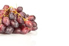Fresh raw red wine grapes isolated on white. Red globe grape cluster isolated on white background shiny deep pink berries Royalty Free Stock Image