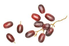 Fresh raw red wine grapes isolated on white. Red globe grape top view isolated on white background dark pink berries Stock Photography