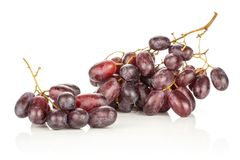 Fresh raw red wine grapes isolated on white. Red globe grape two clusters isolated on white background fresh shiny dark pink berries Royalty Free Stock Image