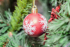 Red globe ornament with snow flake, Christmas tree, pine close u Stock Images