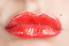 Red gloss lips Stock Image
