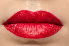 Red Gloss Lips Stock Photography