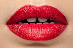Red Gloss Lips Stock Photos