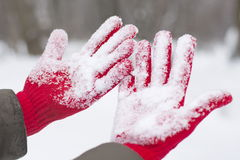 Red gloves covered with snow Royalty Free Stock Photography