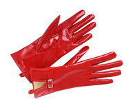 Red gloves Royalty Free Stock Photography