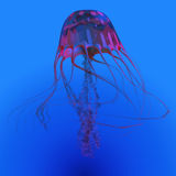 Red Glowing Jellyfish Stock Images